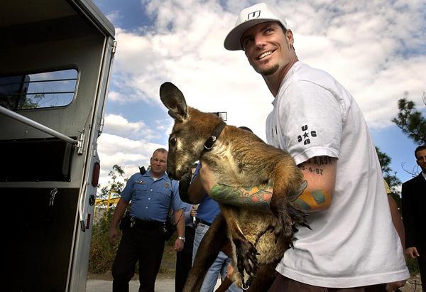 Vanilla Ice ar ķenguru Bucky Autors: GanjaGod Slavenības ar saviem eksotiskajiem dzīvniekiem