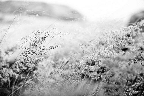 Dzīve ir skaista ja cilvēks... Autors: Fosilija feelings