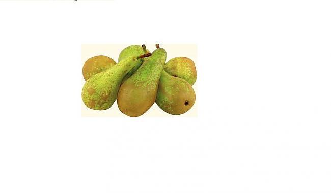 Tā kā fruktozes bumbieros ir... Autors: Ebija Bomineibla Dārzniekam noderēs!:)