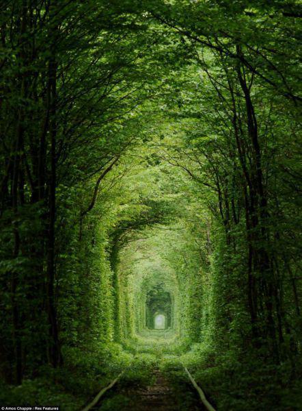 Tunnel of Love Klevan Ukraine Autors: im mad cuz u bad Kur vislabāk pavadīt Valentīndienu?
