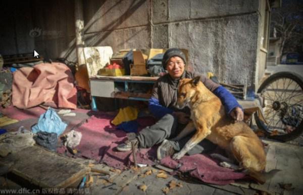 Manao zina un ir priecīgs ka... Autors: kaķūns Lielā Dzeltenā - suns ar lielu sirdi