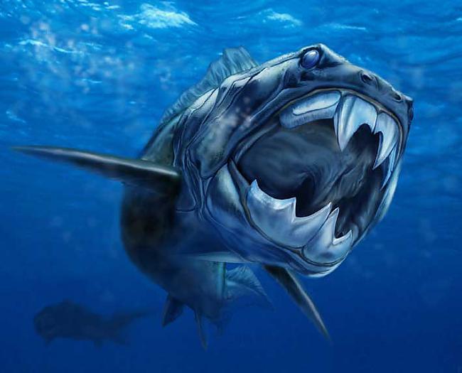 Zivs ēda to laiku citas zivis... Autors: Gmonster Dunkleostus