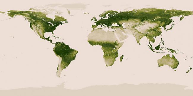 Pasaules veģetācijas karte jeb... Autors: Sulīgais Mandarīns 7 pasaules kartes, kas iespējams padarīs tevi gudrāku