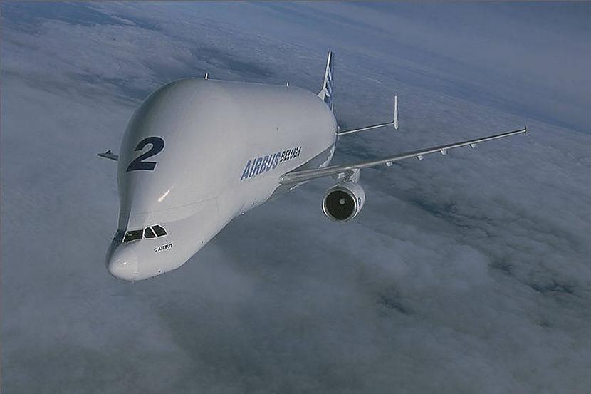 nbsp nbspScaronai... Autors: Mao Meow Airbus Beluga - lidmašīnu pasaules valis