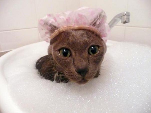 Autors: ChinaReviews Es no ūdens nebaidos!