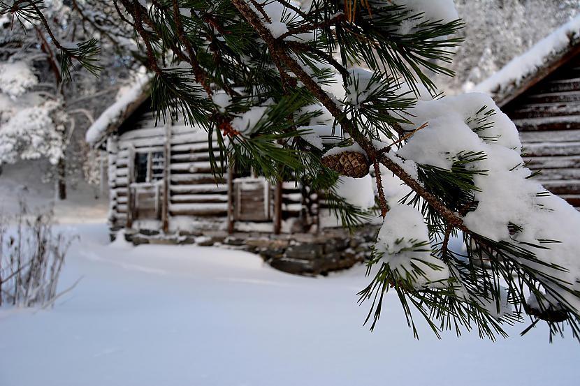 Brīvdabas muzejs Norvēģija Autors: Fosilija Vai nu šādu ziemu, vai nekādu