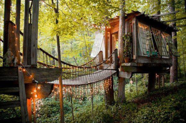 Autors: Hello Pusaudžu sapnis,forša māja kokā.
