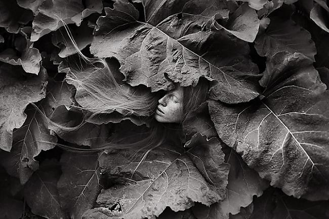 Autors: ieva5 Fotogrāfijas, kuras izdzēš robežu starp cilvēku un dabu