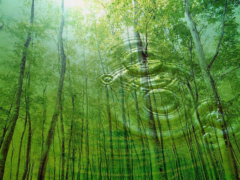Autors: ProudBe Wallpapers -  Nature! 3