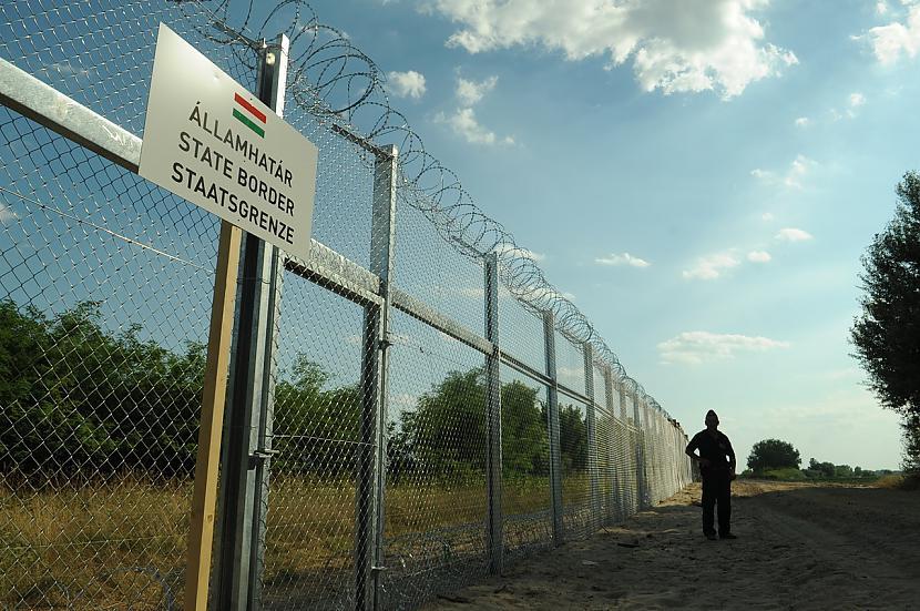 Scaronobrīd vienīgā valsts kas... Autors: WhatDoesTheFoxSay Bēgļi - Eiropas pastāvēšanas beigas?