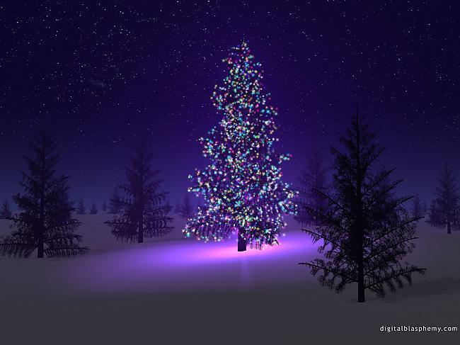 Ziemassvētku eglītes ASV tiek... Autors: super kaste Ziemassvētku fakti