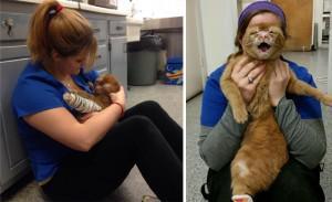 Autors: Fosilija Kaķis kurš izdzīvoja pēc ugunsgrēka un tagad rūpējas par citiem!