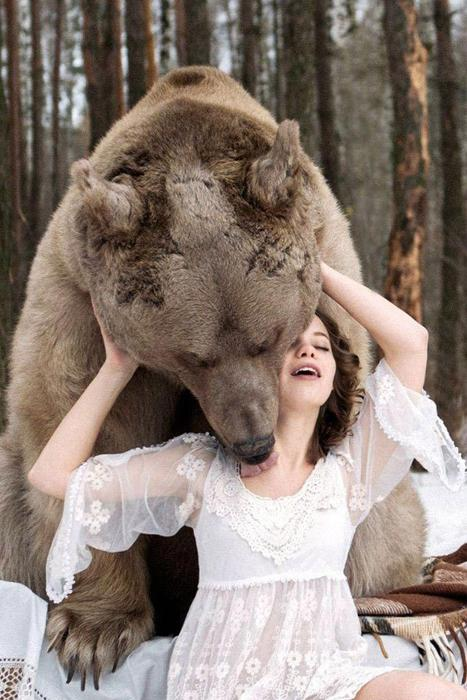 650 kilogramus smagais lācis... Autors: Lords Lanselots Only in Russia - modeles pozē ar lāci!