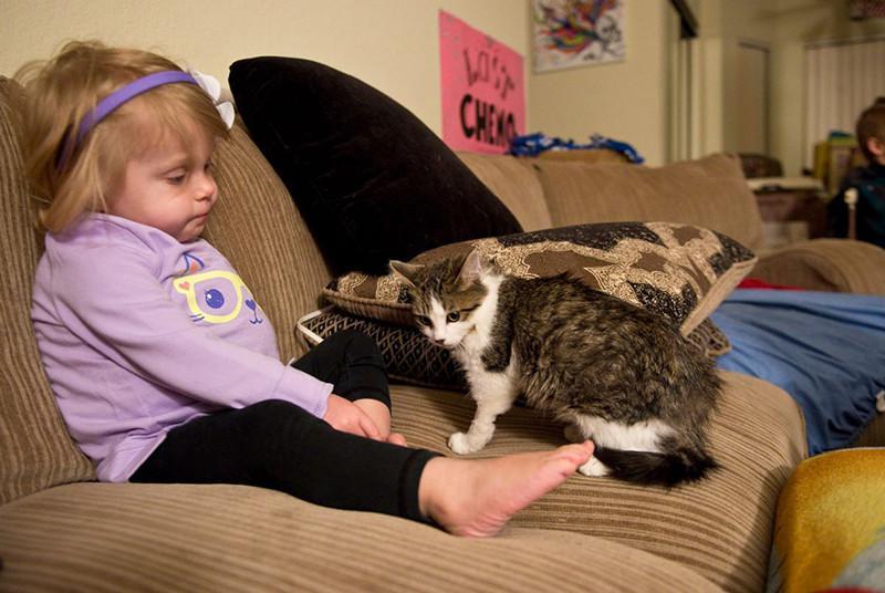 Autors: matilde Meitenīte bez rokas un kaķēns bez ķepiņas atrada viens otru un ir nešķirami!