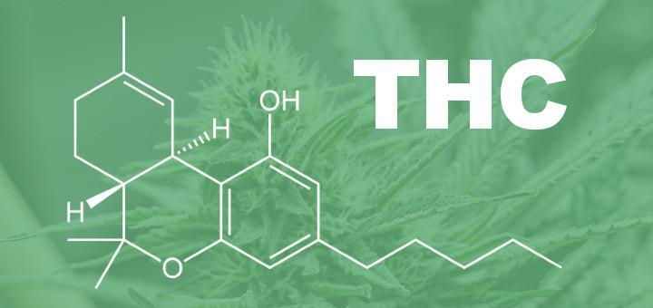 THCJeb citos vārdos delta9... Autors: PkerLv Top 10 kanabinoīdi