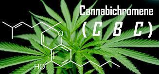 CBCKanabihromensiespējams par... Autors: PkerLv Top 10 kanabinoīdi