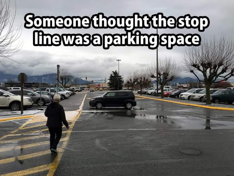 Autors: Fosilija Funny #2