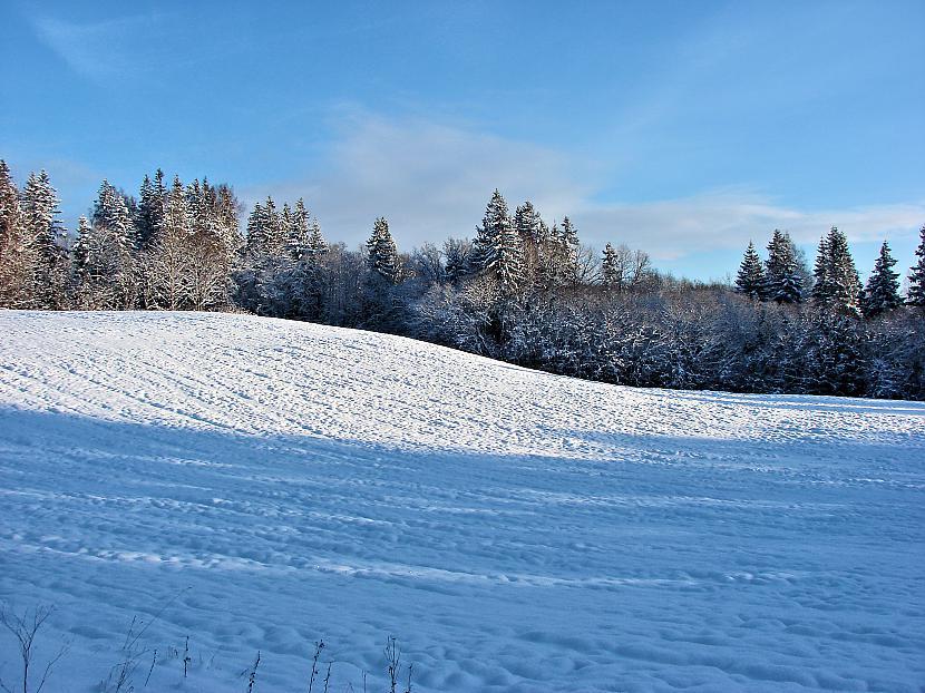 Nesen ziemā Autors: M4R3X Pazudušās un atrastās