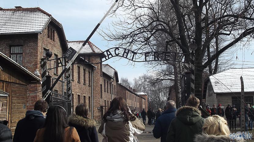 2009 gadā scarono vārtu... Autors: Fosilija Es tur biju, es to redzēju - Aušvices koncentrācijas nometne Birkenau #1