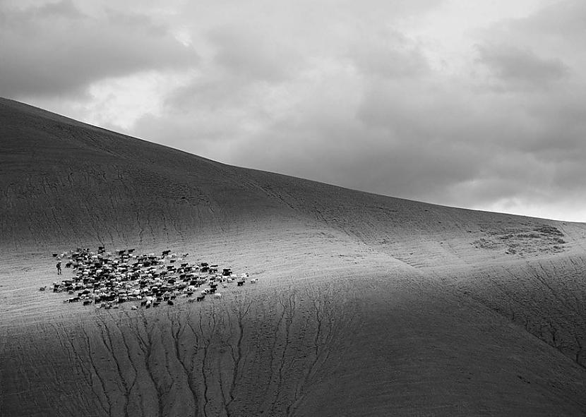 Indija Autors: matilde 2016.gada National Geographic Traveler foto konkursa labākie kadri (20+ attēli)