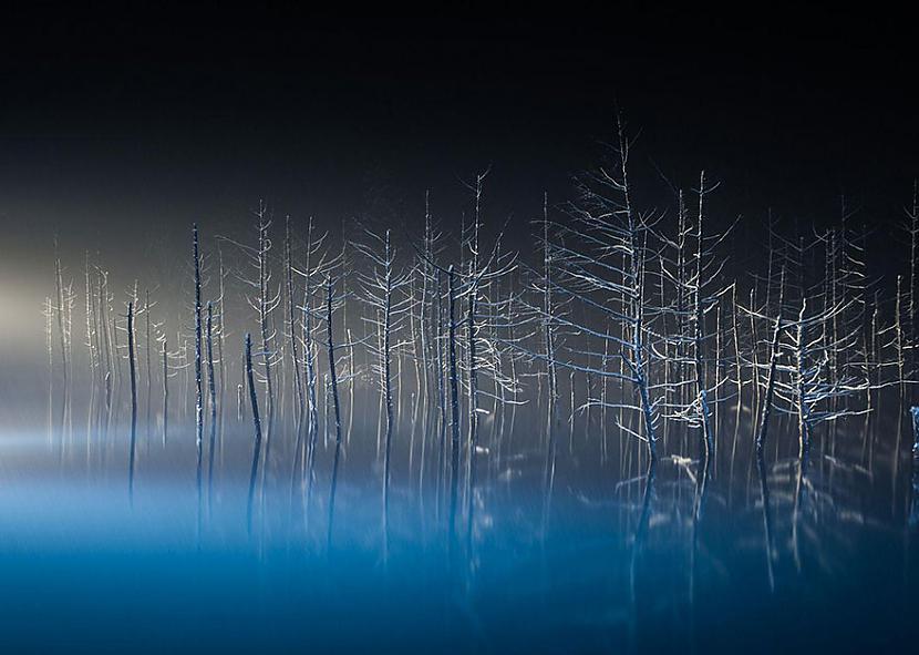 Japāna Autors: matilde 2016.gada National Geographic Traveler foto konkursa labākie kadri (20+ attēli)