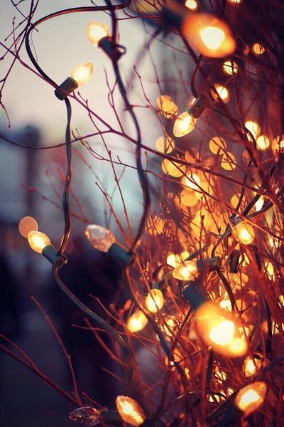 Autors: Fosilija Ziemas noskaņā #7