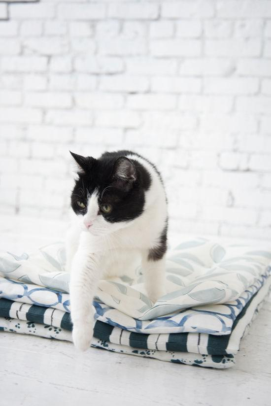 Oriģināla kaķa... Autors: 100 A 24 paštaisītu dāvanu idejas. Skaisti un ātri!