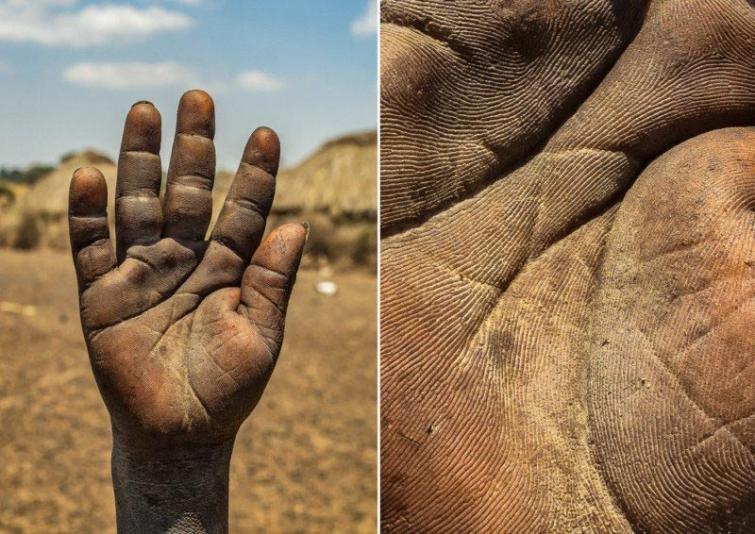 Parasts puisītis ciltī Autors: matilde Fotogrāfs, kurš atrāda dažādu cilvēku profesijas caur viņu rokām