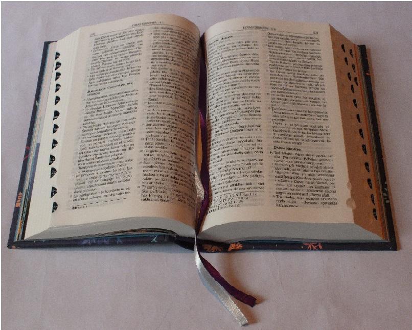 Autors: angelsss51 Kosmosa kuği Bībelē un ikonās