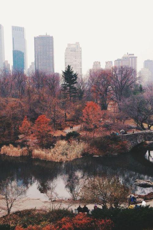 Autors: Fosilija Autumn #16