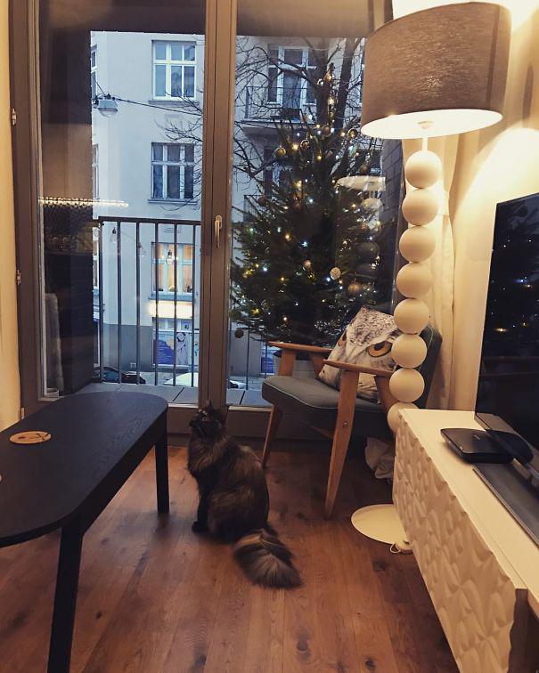 Autors: matilde 17 idejas, kā paglābt savu Ziemassvētku eglīti no mājdzīvniekiem