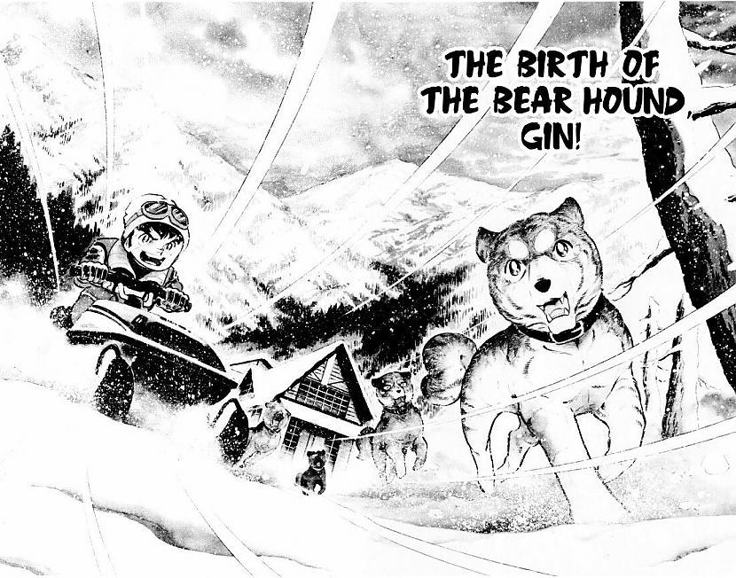Autors: ĢenerālisHansijs Sudrabilkņa Leģendas: Gins 1. - Lāčusuņa dzimšana