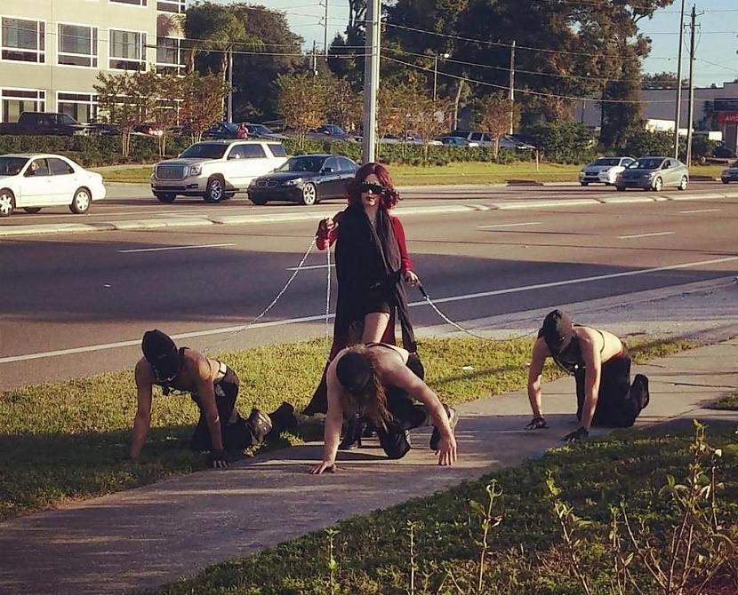 Autors: bendzamins24 WTF  Bildes jautrai dienai...