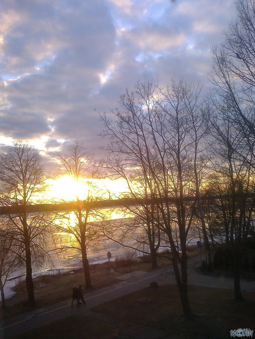 Un aiz loga saulrietsSadedzina... Autors: ezkins Noskaņu apkampienos