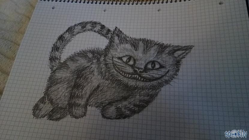 Čescaronīras kaķis  zīmējums... Autors: azulum Vēl daži zīmējumi