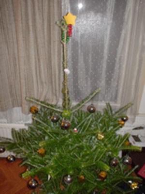 Autors: Marija Smirnova Ir pienācis laiks izvēlēties Ziemassvētku eglīti