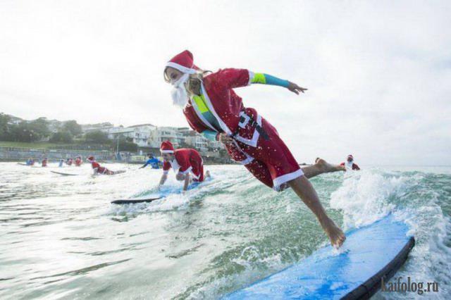 Autors: Pīters Kvils Smieklīgas Ziemassvētku un Jaunā Gada bildītes #5
