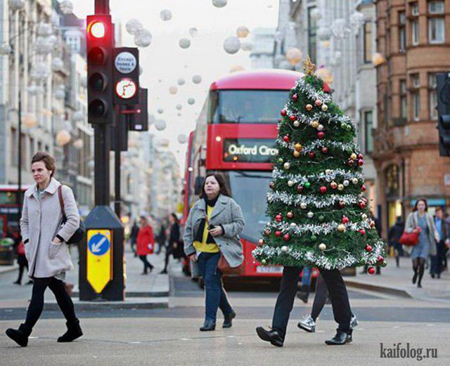 Autors: Pīters Kvils Smieklīgas Ziemassvētku un Jaunā Gada bildītes #7