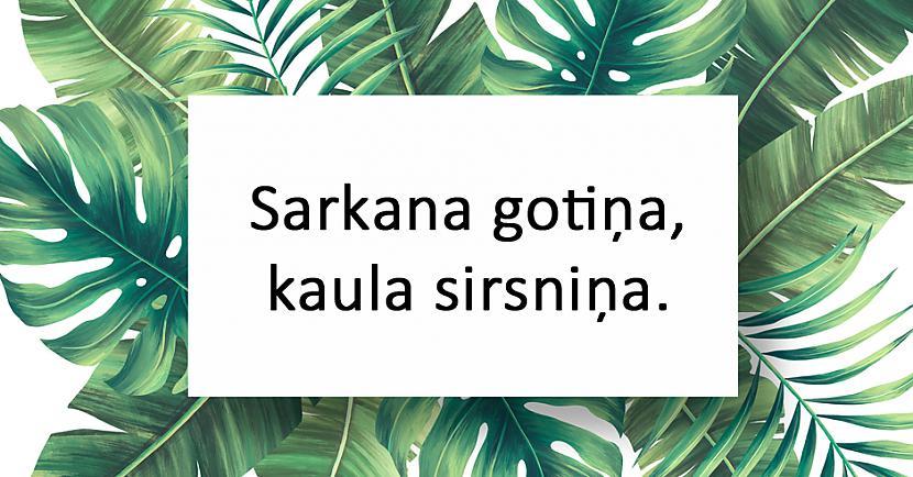 nbspnbspAtbilde Ķirsis Autors: matilde 20 interesantas latviešu tautas mīklas
