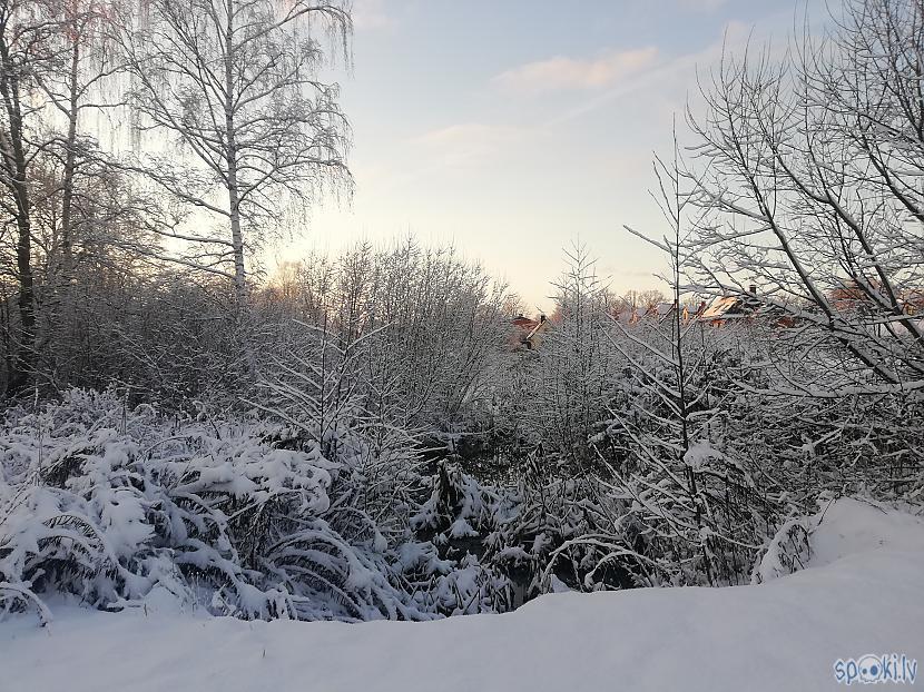 Autors: Latvian Revenger Apkārt tik balts, uzsniga sniegs