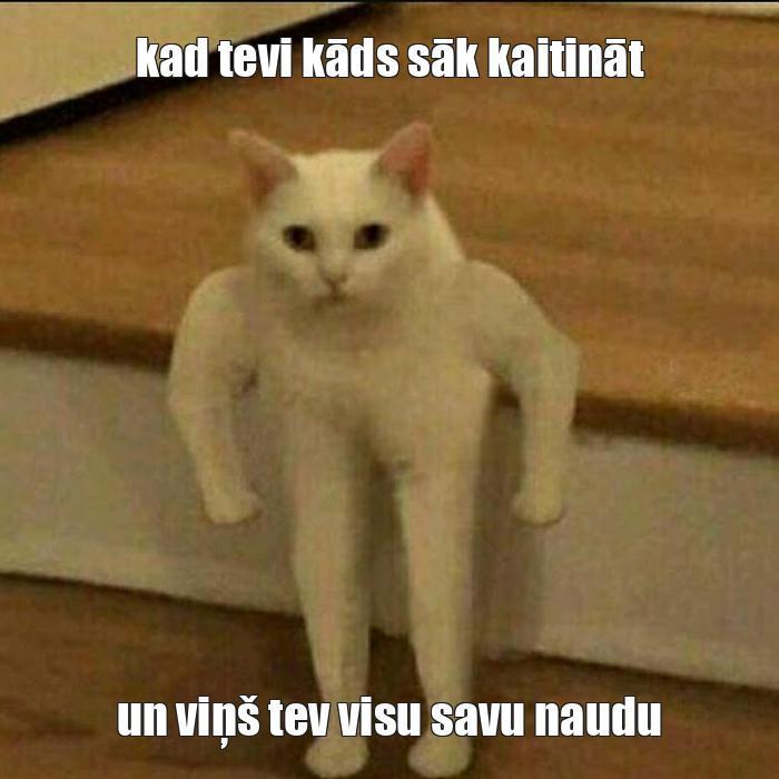 Autors: tom x Memes