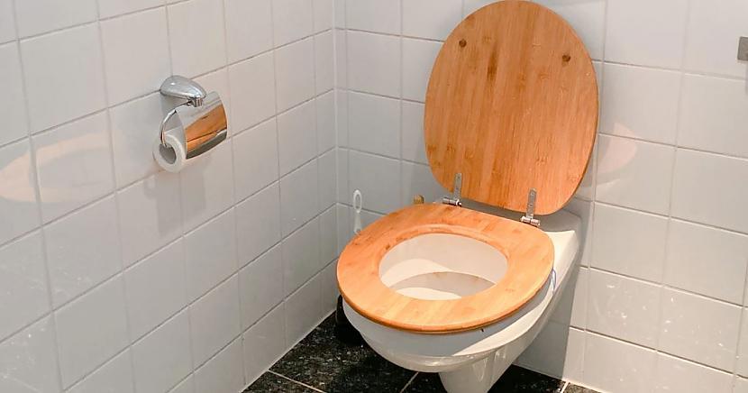 Mēs zinām ka patogēni mīt... Autors: matilde Pretīgā pētījumā parādīts, kas notiek gaisā, kad tualetes podā nolaiž ūdeni