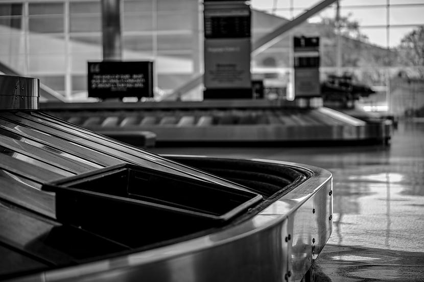 Kukaiņu rāpuļu un zivju... Autors: matilde Neparastākās lietas, ko cilvēki mēģinājuši ienest lidostā