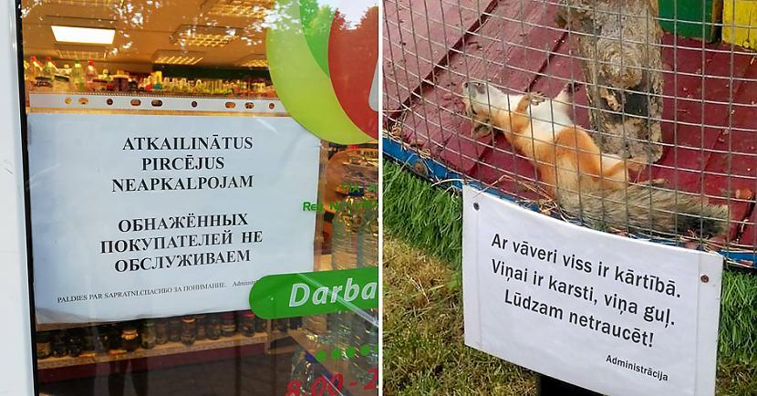Skaties smejies un parādi arī... Autors: matilde 30 lieliski piemēri no sērijas «Iespējams TIKAI Latvijā». Apskati foto!