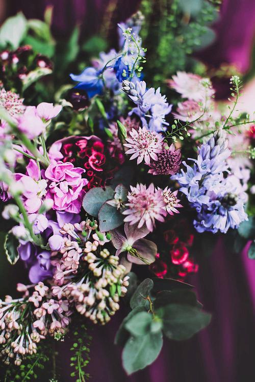 Autors: fancyvitaminsea Foto izlase lieliskai dienai!