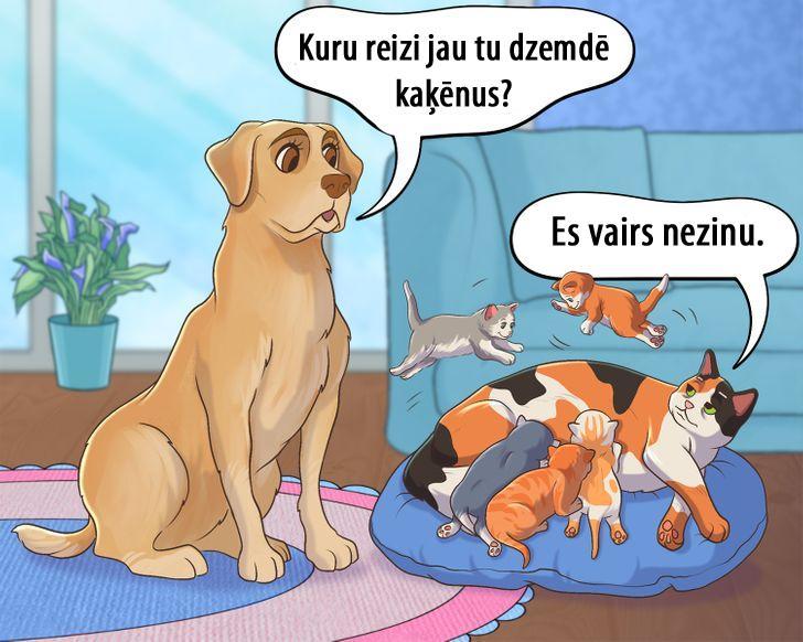 Mazi kaķēni ir ļoti jauki bet... Autors: matilde 15 komiksi, kas atgādina, ka mēs esam atbildīgi par tiem, kurus pieradinām